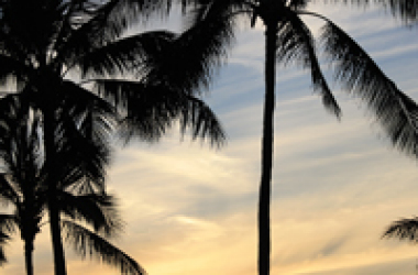 Dreaming California & Hawaii