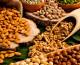 Gli omega 3 preziosi alleati della salute