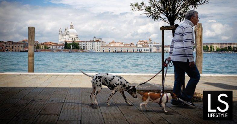 Paolo Colonna – Fotografo del mese di Giugno 2016