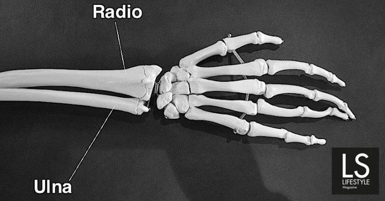 """Medicina. Quando mano e polso fanno """"crack"""". Intervista al Dott. Riccardo Luchetti"""