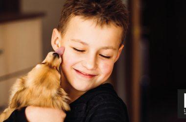 Come gestire l'arrivo di un cucciolo
